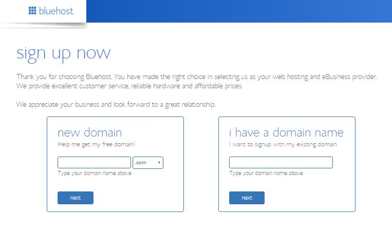 bluehost-new-domain-page